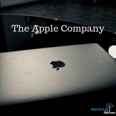 Apple Incorporation Case Study Summary
