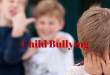 Child Bullying Research Paper Example
