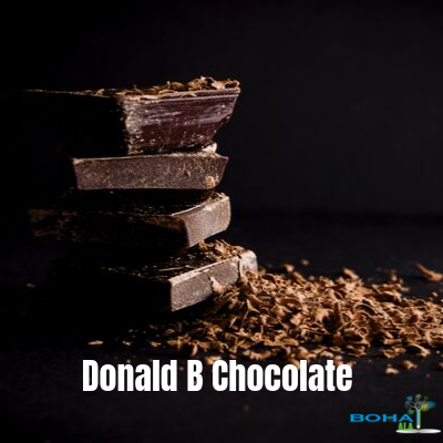 Donald B Chocolate Environmental Marketing Analysis