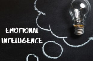 Emotional Intelligence Essay Example