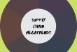 Supply Chain Management Megatrends