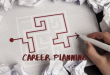 The Career Planning Essay Example