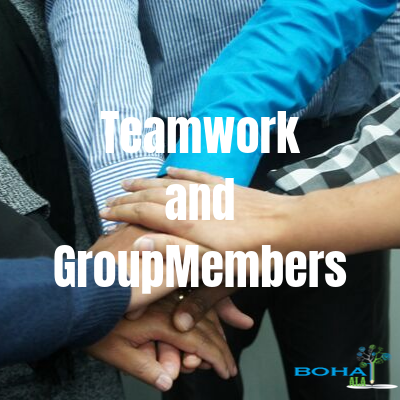 Theories on Teamwork and Role of Group Members