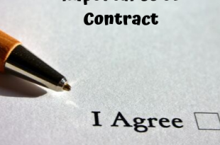 What is Contract and its Importance