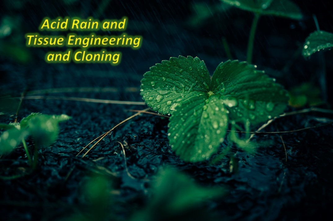 Acid Rain and Tissue Engineering and Cloning