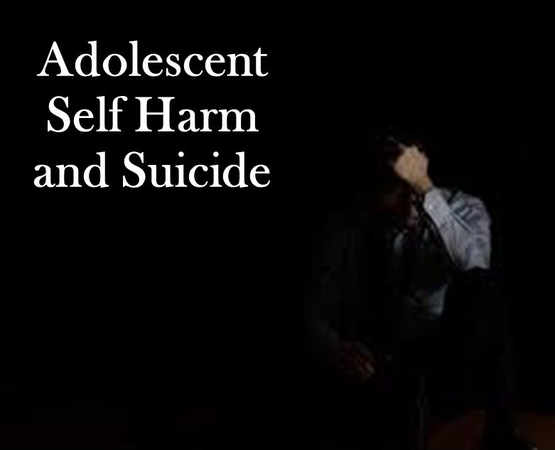 Adolescent Self Harm and Suicide Research Proposal