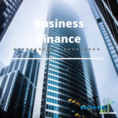 Business Finance Introduction Report