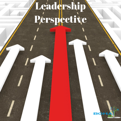 Characteristics of Leadership and its Perspectives