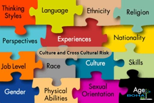 Culture and Cross Cultural Risk in International Business
