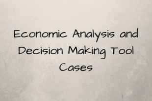 Economic Analysis and Decision Making Tool Cases