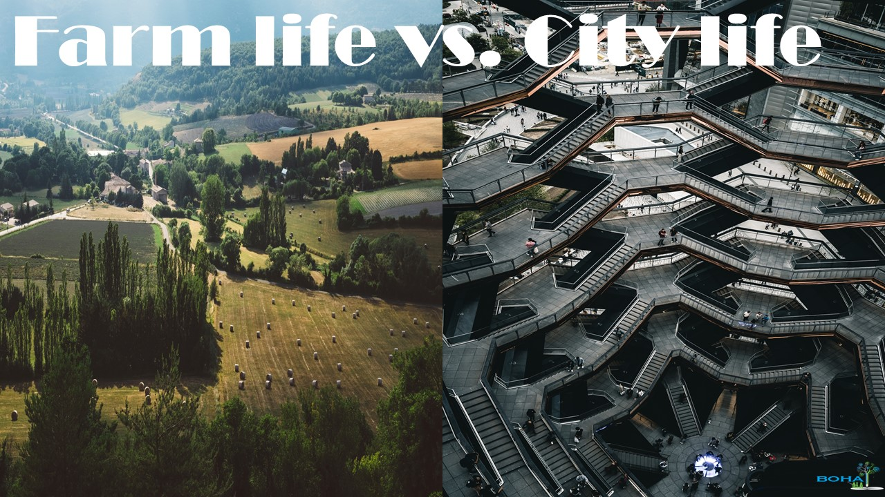 Farm life vs. City life
