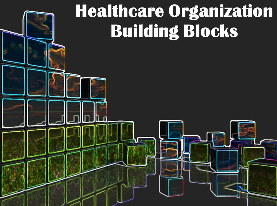 Healthcare Organization Building Blocks