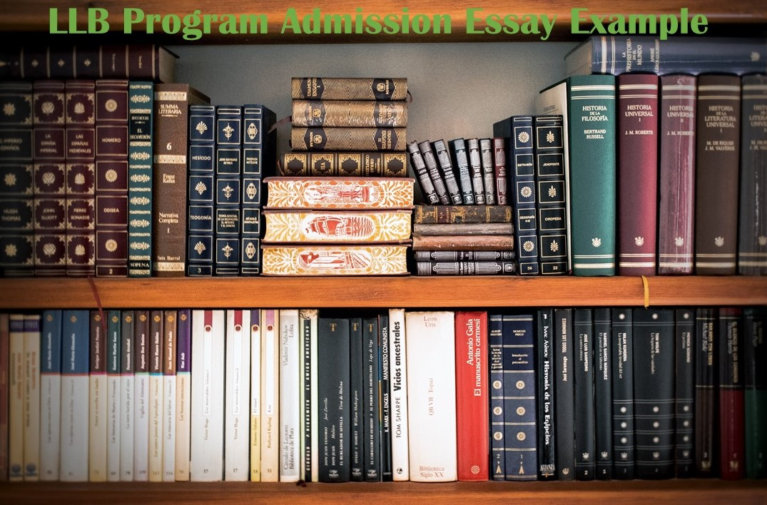 LLB Program Admission Essay Example