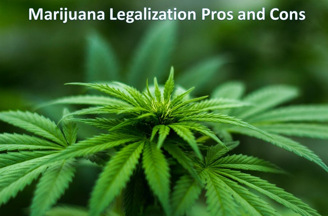 Marijuana Legalization Pros and Cons