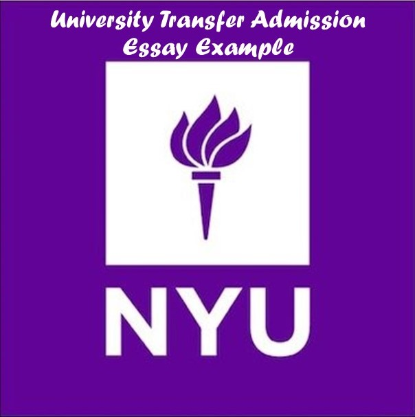 Nyu admission essay requirements