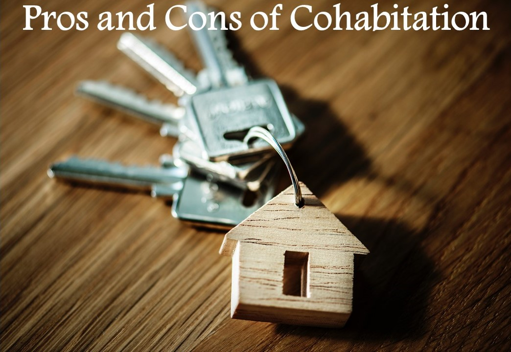 Pros and Cons of Cohabitation