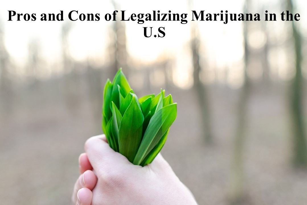 Pros and Cons of Legalizing Marijuana in the U.S