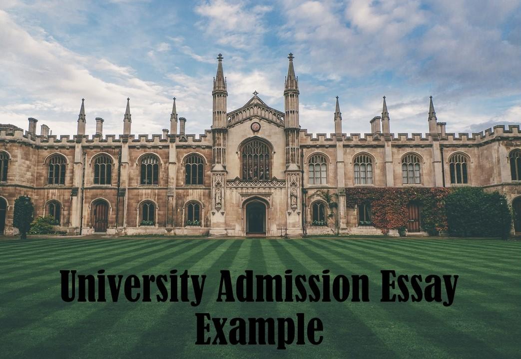 Bentley University Admission Essay Example