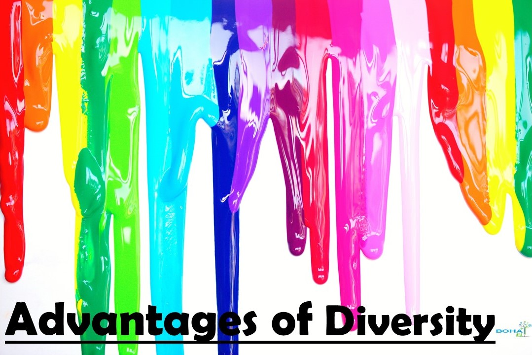 Benefits and Advantages of Diversity