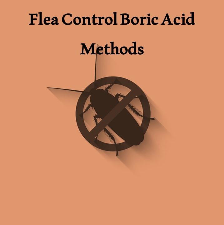 Advantages of Flea Control Boric Acid Methods