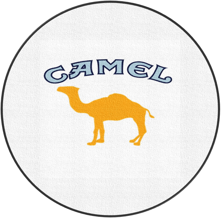 Advertisement Technique Used in the Marketing of the Camel Cigarettes