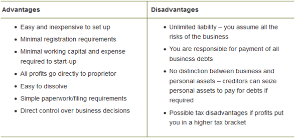 Advantages and Disadvantages of Unincorporated Business
