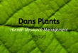 Dans Plants Human Resource Management Report