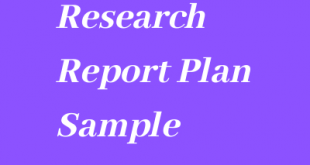 Research Report Plan Sample