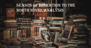 Season of Migration to the North Novel Analysis