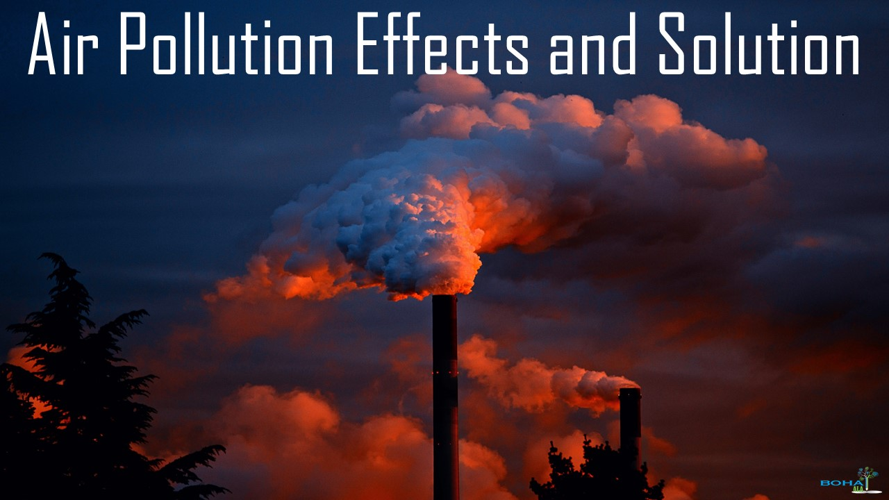 Health and Environmental Effects of Air Pollution and Solutions