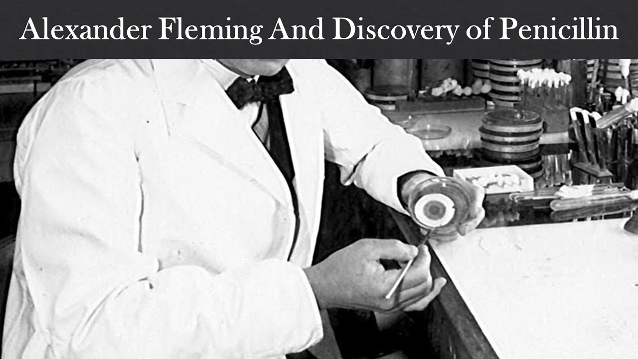 Alexander Fleming And Discovery of Penicillin