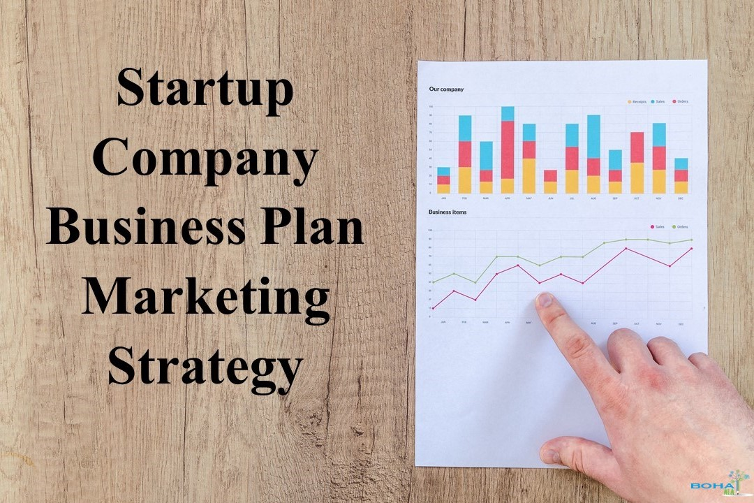 Startup Company Business Plan Marketing Strategy