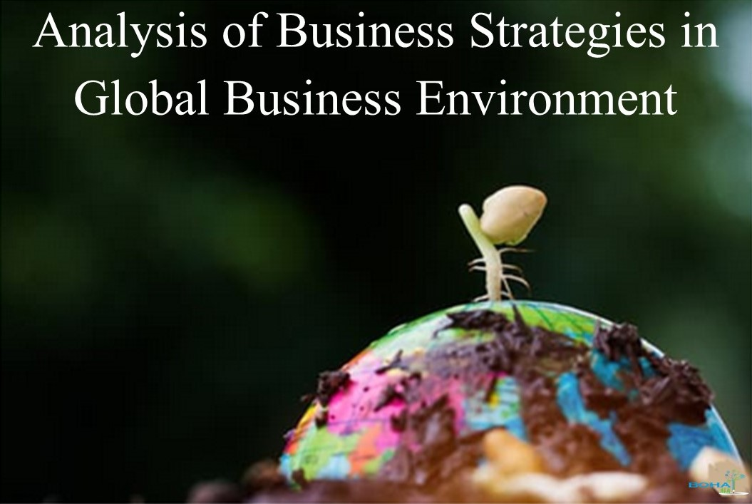 Analysis of Business Strategies in Global Business Environment