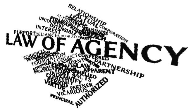 Importance of Agency Law in Business Environment