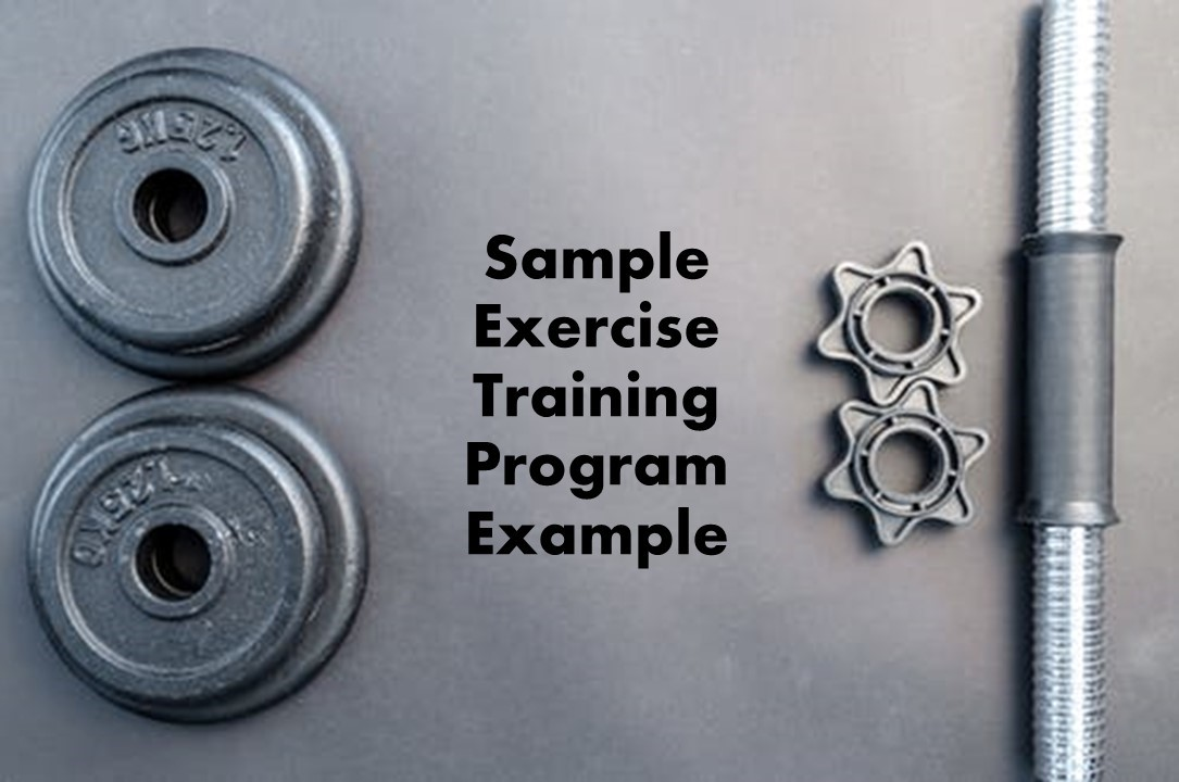 Sample Exercise Training Program and Diet Plan Example