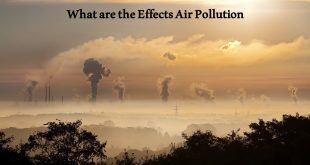 What are the Effects Air Pollution
