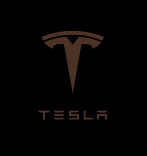 An Essay on Tesla Motors