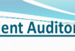 Independent Audit Report Example