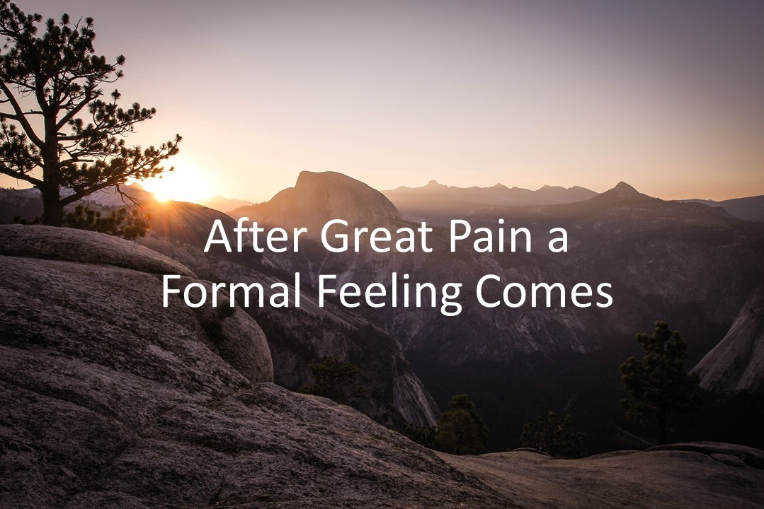 After Great Pain a Formal Feeling Comes Summary Analysis