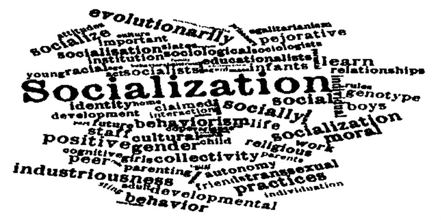 Agents of Socialization Overview
