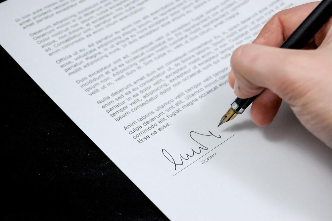 University Admission Application Essay Example