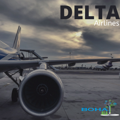 Delta Airlines Company Research Paper Analysis