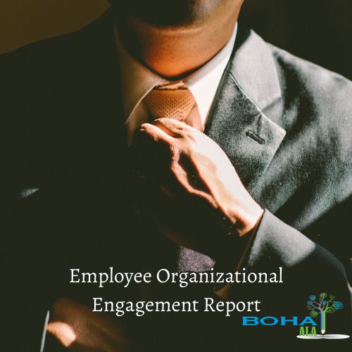 Employee Organizational Engagement Report
