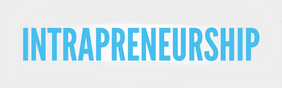 Effective Use of Power in Intrapreneurship on a Workplace
