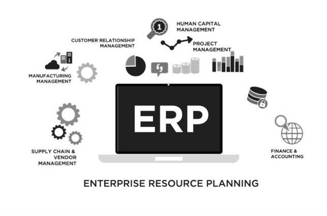 ERP System Failures Reasons