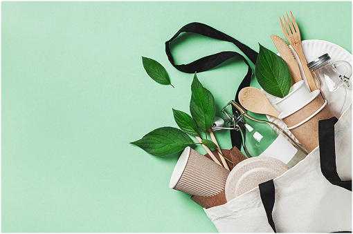 7 Things You Should Know About the Eco-Friendly Bags