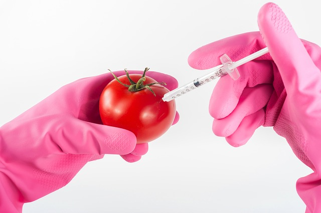 Positives and Negatives of Genetically Modified Foods