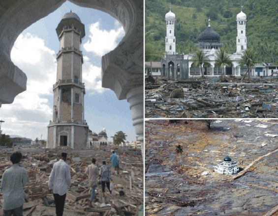 Well-Constructed Buildings Survived the Indian Ocean Tsunami