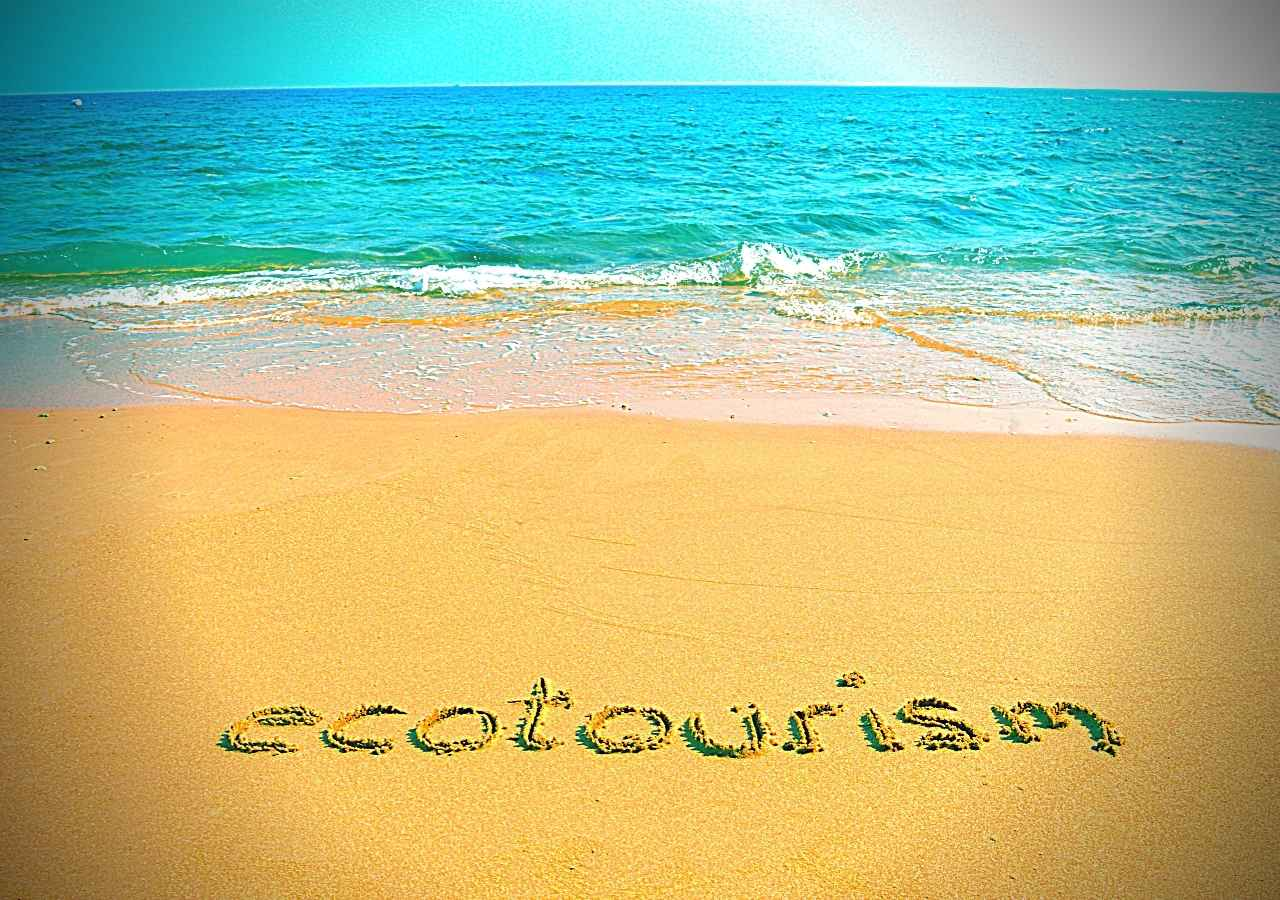 Marketing Approaches Used for Ecotourism