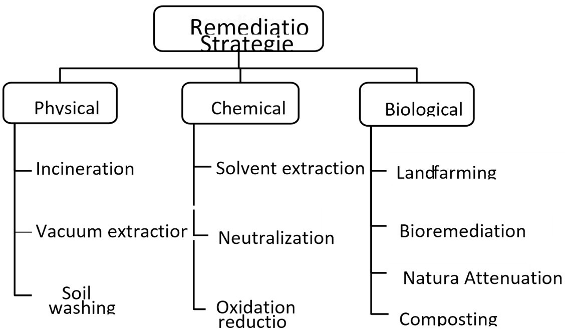 Remediation Strategies of hydrocarbons